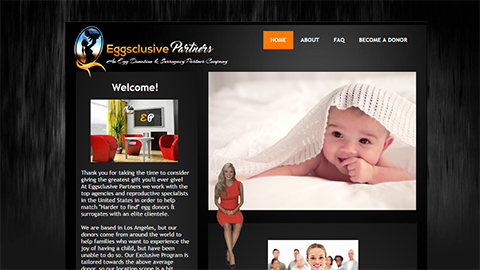 Website Spokesperson Example - Eggsclusive Partners